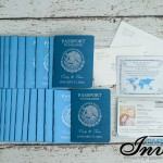 Blue Passport wedding invitations moon palace mexico (1)