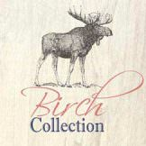 Birch Collection