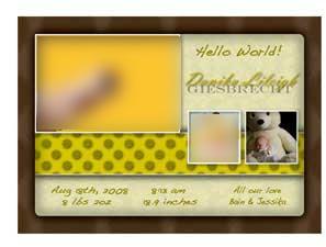 Newborn Announcement 2Y